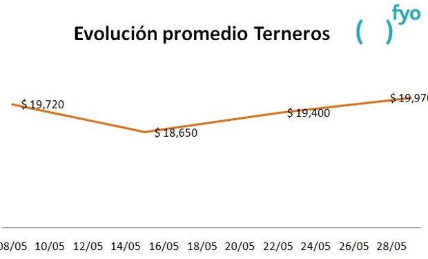El gráfico muestra la evolución del precio promedio de la categoría Terneros en el Mercado de Liniers durante el mes de mayo. Fuente: fyo