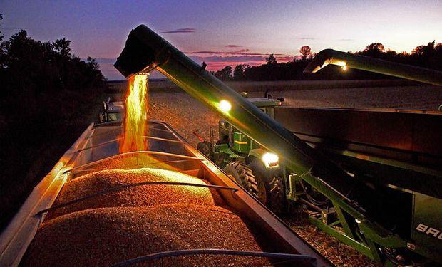 Sin embargo los productores norteamericanos no se resignan a esto y demoran sus ventas, lo que evita que las bajas sean más profundas.