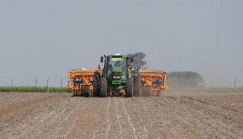 Siembra de precisión: con estabilizadores de cuerpos se podría incrementar la producción de maíz