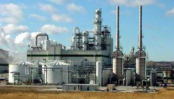 Se espera un record histórico en la producción de bioetanol