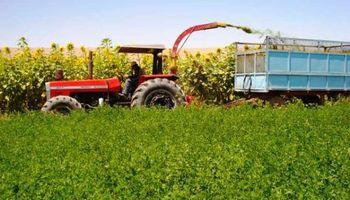 La producción agrícola subió, pero la industria suma caidas