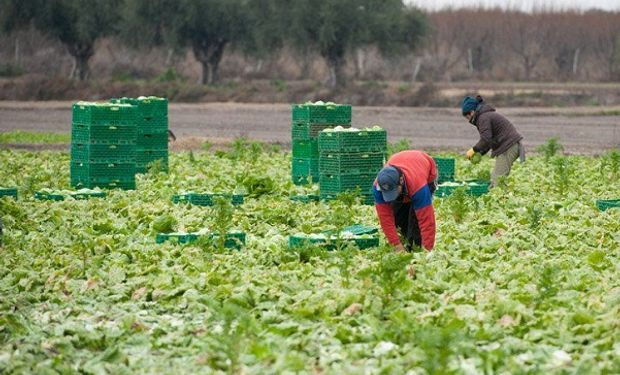 Buenos Aires busca abrir el mercado de China para comercializar frutas y hortalizas