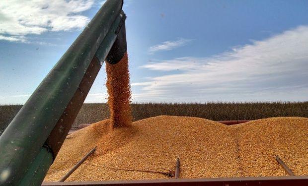 Santa Fe registra la participación del estado sobre la renta agrícola más alta en trigo y girasol.