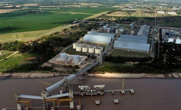 Creció la producción de aceites y subproductos de la soja.