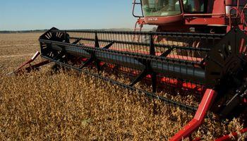 Quiénes son los principales jugadores de la producción global de granos