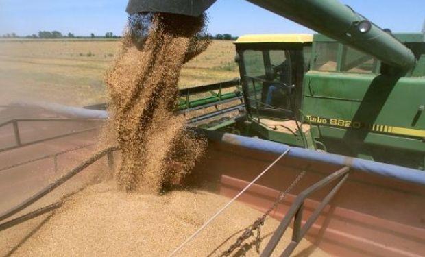 La cosecha de soja en Brasil está ganando ritmo.  Esa mercadería promete presionar los valores a la baja.