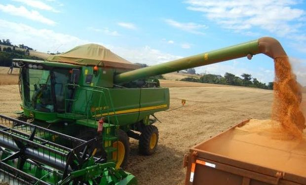 Producción de granos sería de 200,7 millones de toneladas.