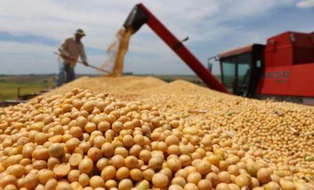 El gran incremento de la producción provendrá desde Brasil y Argentina (oleaginosas) y desde Rusia y Ucrania (granos).