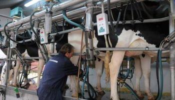 Estiman que la producción de leche en 2017 va a ser menor que el año anterior
