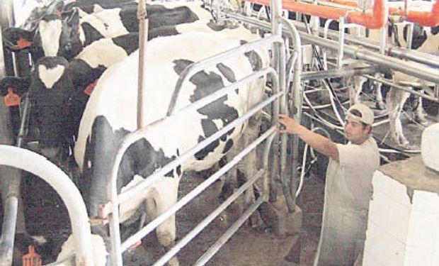 El estancamiento de la producción de leche en la Argentina se hace más visible si se miran los últimos años.