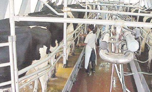 La crisis del sector, agravada en 2001-2002, provocó sucesivas caídas en los volúmenes de leche producidos.