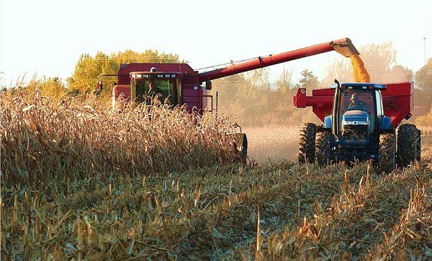 La Bolsa de Cereales de Buenos Aires mantiene la proyección de producción en 25.000.000 de toneladas para la campaña en curso.