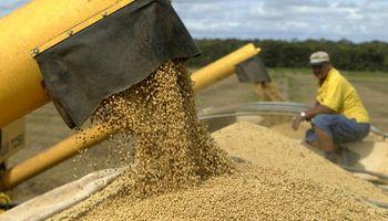 En 10 años, Paraguay duplicó la exportación de soja
