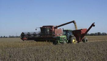 Labores de cosecha ingresan en la recta final en Santa Fe