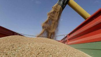 Sin crecimiento en la producción de granos