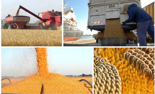 Cada vez mejor como líder en el mercado mundial de granos y subproductos.