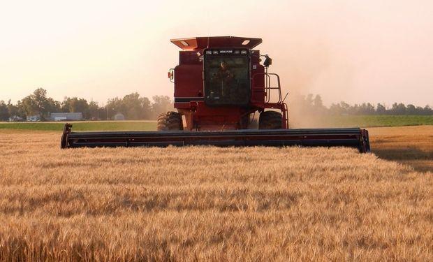 Estimó el informe Departamento de Agricultura de Estados Unidos.