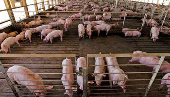 ¿Cómo reducir costos en alimentación?