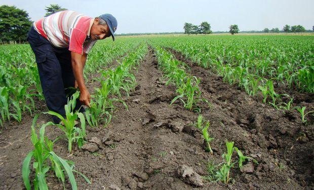Para los productores agropecuarios no es sólo un incordio financiero de difícil cumplimiento: esconde el propósito de cobrar una cuota adicional sobre fines de 2015.