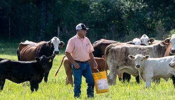 """Carne: con la salida de Argentina, Estados Unidos ve una oportunidad """"brillante"""" para los productores"""