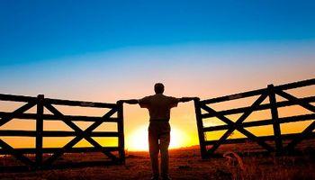 Cuentas bancarias de productores agropecuarios: crean registro para acceder a beneficios