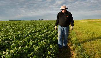 Ayuda de US$ 14.000 millones para farmers: cuánto recibirán por soja y maíz