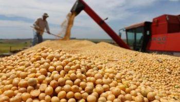 Productor sojero recuperaría un 34% de las retenciones que paga