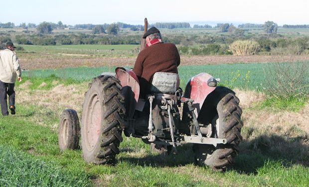 Productores agropecuarios: detalles del Programa de Asistencia de Emergencia al Trabajo y la Producción