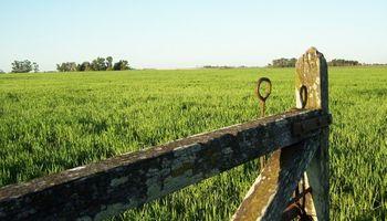 Agricultores del Chaco quieren irse a Bolivia a producir