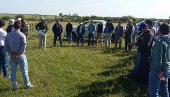 Encuesta a productores CREA: por primera vez desde 2015 cae la superficie agrícola arrendada