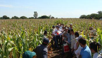 Cruzada inédita por los agroecosistemas: INTA, Aapresid, CREA y la UBA encuestarán a productores de todo el país