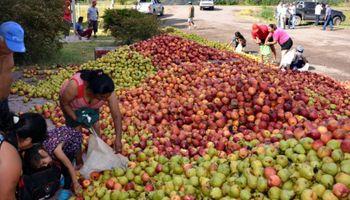 Productores frutícolas están en crisis y reclaman ayuda del Gobierno