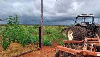 Contrastes: la tasa para productores brasileros está en un mínimo histórico