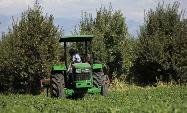Comienza a regir el nuevo seguro agrícola que cubrirá por heladas y granizo a 16 mil productores de Mendoza.