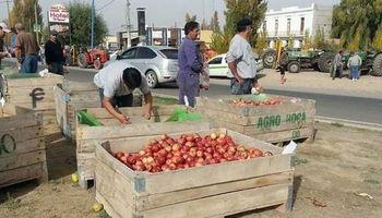 Productores frutícolas vuelven a las rutas y esperan que los reciba Aníbal Fernández