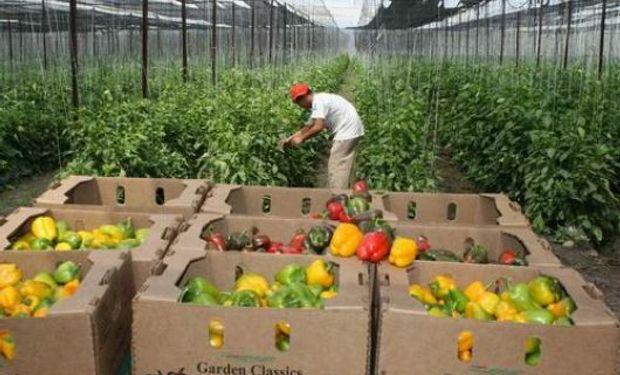 Ante una consulta de LA NACION, una fuente de Agricultura negó que el giro del dinero se haga según el color político de los municipios.