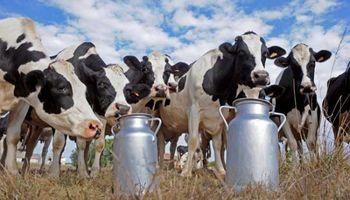 Subsidios de 10 centavos por litro de leche