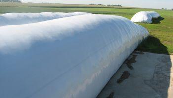 Productores retienen trigo a la espera de mejores precios
