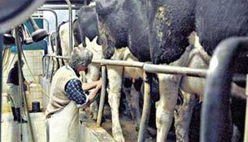 Amenazan con aplicar la ley de abastecimiento a la industria láctea