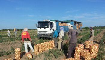 Devaluación brasileña deja fuera de competencia a muchos productos agropecuarios