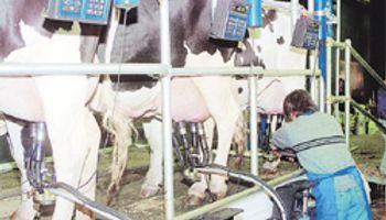 China habilitó productos lácteos argentinos