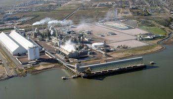Profertil para por 60 días la planta de fertilizantes de Bahía Blanca: el motivo