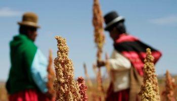 Agroindustria lanzó programa de inserción económica para diez provincias