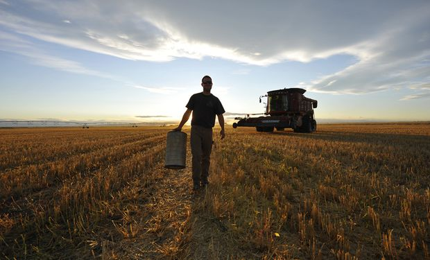 Podrán inscribirse en el Programa, trabajadores temporarios del sector agrario y agroindustrial, en situación de desocupación.