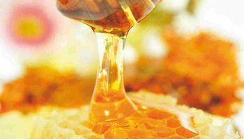 """Prohíben la comercialización de una """"miel vegana"""" por no ser miel"""