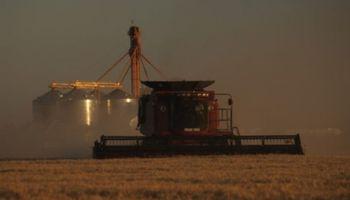 Suba de combustibles: productores soportarán un gasto adicional de $ 10.850 millones