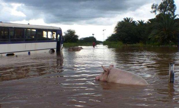 El pronóstico de lluvia mantiene en estado de alerta a las zonas afectadas por las inundaciones.