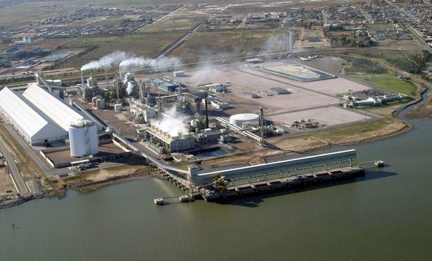 """Fuentes de la empresa Monsanto contaron que hasta hace una semana la fábrica estaba produciendo herbicidas """"las 24 horas de los sietes días de la semana"""" para la campaña 2014-2015. """"Ahora estamos completamente parados"""", indicó."""