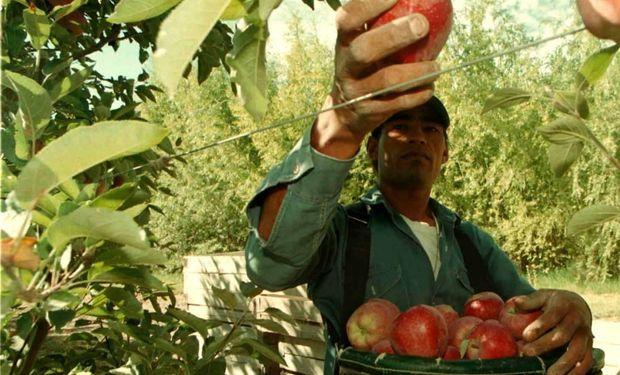 Productores frutícolas vuelven a las rutas para exigir ayuda.