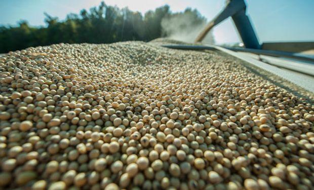Presentan el proyecto para las operaciones de granos